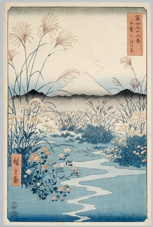 Utagawa Hiroshige: The Ötsuki Plain in Kai Province - Honolulu Museum of Art