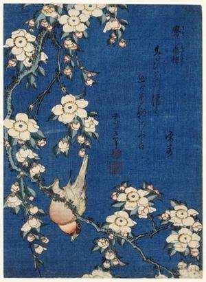 葛飾北斎: Weeping Cherry and Bullfinch - ホノルル美術館