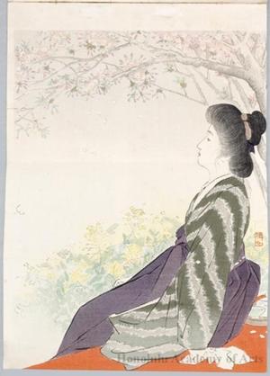 武内桂舟: Enjoying Spring (Bungei Kurabu) - ホノルル美術館