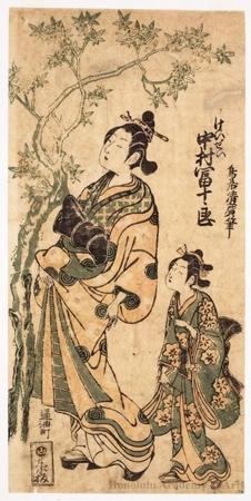 Torii Kiyohiro: Nakamura Tomijürö I as a Courtesan - Honolulu Museum of Art