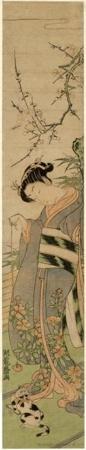 Isoda Koryusai: Girl Playing with Kitten under Blossoming Plum Tree - Honolulu Museum of Art