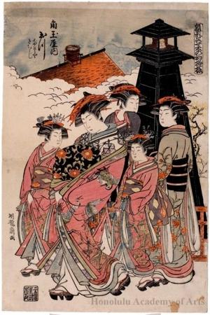 Isoda Koryusai: The Courtesan Tamagawa of the Kadotama-ya Brothel House - Honolulu Museum of Art