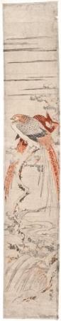 磯田湖龍齋: Two Pheasants on Pine Branch - ホノルル美術館
