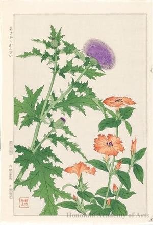 Kawarazaki Shödö: Thistle and Gampii - ホノルル美術館