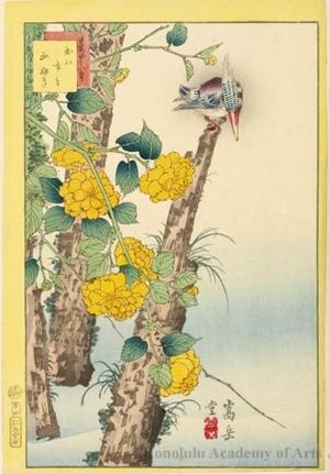 Sügakudö: Kingfisher and Japanese Roses - ホノルル美術館