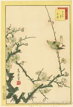 Sügakudö: Nightingale on White Plum Branch - Honolulu Museum of Art