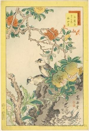 Sügakudö: Starlings, Pomegranates and Balsams - ホノルル美術館