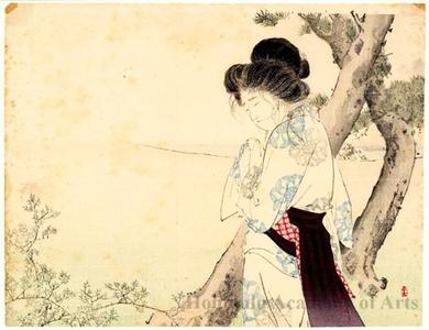 Mizuno Toshikata: A Mad Woman in Yawata - Honolulu Museum of Art