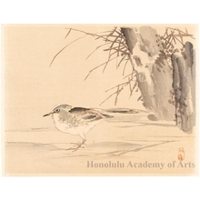 Kono Bairei: Birds and Reeds (descriptive title) - Honolulu Museum of Art