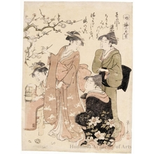 Hosoda Eishi: Plum blossom- viewing - Honolulu Museum of Art
