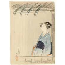Ogata Gekko: Irises - Honolulu Museum of Art