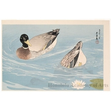 Hashiguchi Goyo: Ducks - Honolulu Museum of Art
