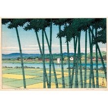 Kawase Hasui: Bamboo Forest, Tama River - Honolulu Museum of Art
