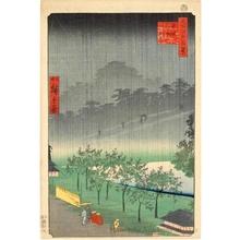 二歌川広重: Evening View of Rain in Paulownia Field at Akasaka - ホノルル美術館
