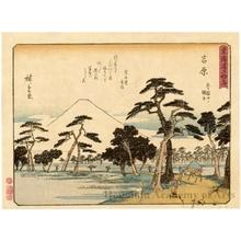 Utagawa Hiroshige: Yoshiwara (Station # 15) - Honolulu Museum of Art