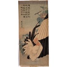 Utagawa Hiroshige: Cock, Umbrella and Morning Glories - Honolulu Museum of Art