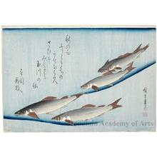 歌川広重: Japanese River Trout - ホノルル美術館