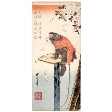 Utagawa Hiroshige: Monkey Tied with a Rope to a Cherry Tree - Honolulu Museum of Art