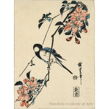 Utagawa Hiroshige: blue bird on cherry blossoms - Honolulu Museum of Art