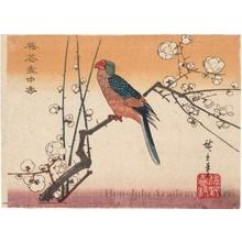 Utagawa Hiroshige: Parrot and Plum Tree - Honolulu Museum of Art