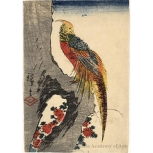 Utagawa Hiroshige: Pheasant on Grey Tree Trunk (Descriptive Title) - Honolulu Museum of Art