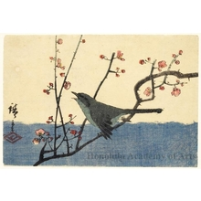 Utagawa Hiroshige: Green Warbler on Pink Flowering Plum Branch - Honolulu Museum of Art