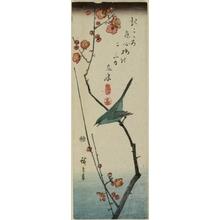 Utagawa Hiroshige: Nightingale on Plum Branch - Honolulu Museum of Art