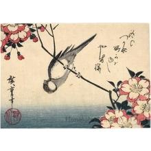 Utagawa Hiroshige: A Titmouse on a Branch of Cherry - Honolulu Museum of Art