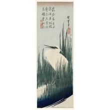 歌川広重: An Egret among Rushes - ホノルル美術館