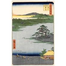 Utagawa Hiroshige: Robe-Hanging Pine, Senzoku Pond - Honolulu Museum of Art