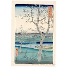 歌川広重: Koshigaya in Musashi Province - ホノルル美術館
