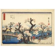 Utagawa Hiroshige: Cherry Blossoms on the River Banks at Koganei - Honolulu Museum of Art