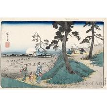 Utagawa Hiroshige: Listening to Insects at Dokan Hill - Honolulu Museum of Art