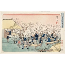 Utagawa Hiroshige: Plum Garden Estate, Kameido - Honolulu Museum of Art
