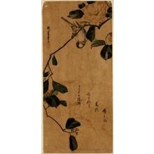 Utagawa Hiroshige: A Titmouse Hanging Head Downward on a Camellia Branch - Honolulu Museum of Art