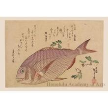 Utagawa Hiroshige: Snapper and Japanese Pepper - Honolulu Museum of Art