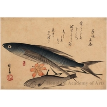 Utagawa Hiroshige: Flying Fish, Japanese Croaker & Lily - Honolulu Museum of Art