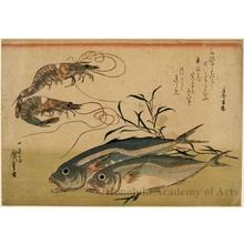 歌川広重: Horse-Mackkerel andd Prawns - ホノルル美術館
