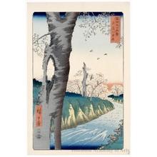 Utagawa Hiroshige: Koganei in Musashi Province - Honolulu Museum of Art