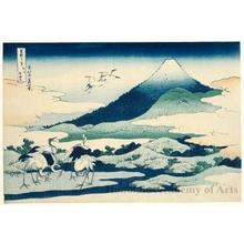 Katsushika Hokusai: Near Umezawa in Sagami Province - Honolulu Museum of Art