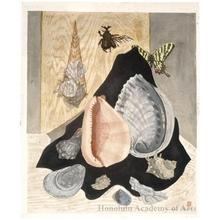 Sekino Junichirö: Shells and Butterflies - Honolulu Museum of Art