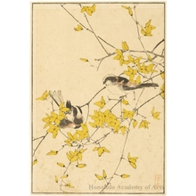 Imao Keinen: Birds in Yellow Bush (descriptive title) - Honolulu Museum of Art