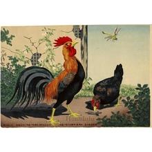 小林清親: Chickens and Dragonfly - ホノルル美術館