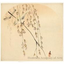 小林清親: Bird and Cherry Blossoms (Descriptive title) - ホノルル美術館