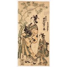 鳥居清廣: Nakamura Tomijürö I as a Courtesan - ホノルル美術館