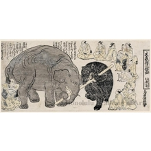 Torii Kiyomasu II: Daizö Bö no Nemojiai (the Great Elephant in a Tug-of-War with a Pole) - Honolulu Museum of Art