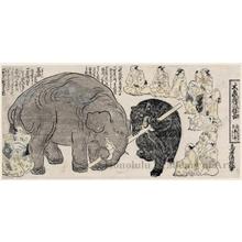 鳥居清倍: Daizö Bö no Nemojiai (the Great Elephant in a Tug-of-War with a Pole) - ホノルル美術館