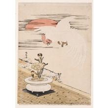 磯田湖龍齋: The White Rooster - ホノルル美術館