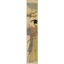 Isoda Koryusai: First Auspicious Dream of the Year - Honolulu Museum of Art