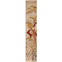 磯田湖龍齋: Pheasant on a Pine Branch (descriptive title) - ホノルル美術館